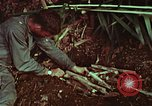 Image of survival techniques Philippines, 1968, second 57 stock footage video 65675072403