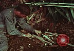 Image of survival techniques Philippines, 1968, second 60 stock footage video 65675072403