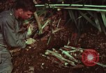 Image of survival techniques Philippines, 1968, second 62 stock footage video 65675072403