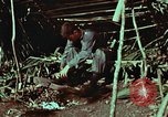 Image of survival techniques Philippines, 1968, second 2 stock footage video 65675072404