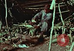 Image of survival techniques Philippines, 1968, second 5 stock footage video 65675072404
