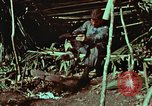 Image of survival techniques Philippines, 1968, second 6 stock footage video 65675072404
