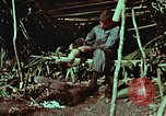 Image of survival techniques Philippines, 1968, second 9 stock footage video 65675072404