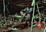 Image of survival techniques Philippines, 1968, second 11 stock footage video 65675072404
