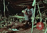 Image of survival techniques Philippines, 1968, second 14 stock footage video 65675072404