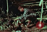 Image of survival techniques Philippines, 1968, second 35 stock footage video 65675072404