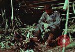 Image of survival techniques Philippines, 1968, second 44 stock footage video 65675072404