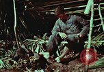 Image of survival techniques Philippines, 1968, second 48 stock footage video 65675072404