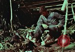 Image of survival techniques Philippines, 1968, second 52 stock footage video 65675072404