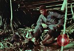 Image of survival techniques Philippines, 1968, second 53 stock footage video 65675072404