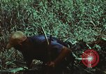 Image of survival techniques Philippines, 1968, second 29 stock footage video 65675072406