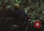 Image of survival techniques Philippines, 1968, second 33 stock footage video 65675072406