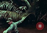 Image of survival techniques Philippines, 1968, second 39 stock footage video 65675072406