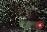 Image of survival techniques Philippines, 1968, second 52 stock footage video 65675072406