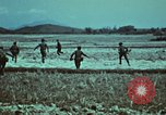 Image of survival techniques Philippines, 1968, second 13 stock footage video 65675072407