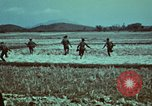 Image of survival techniques Philippines, 1968, second 14 stock footage video 65675072407