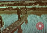 Image of survival techniques Philippines, 1968, second 15 stock footage video 65675072407