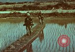 Image of survival techniques Philippines, 1968, second 16 stock footage video 65675072407