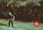 Image of survival techniques Philippines, 1968, second 20 stock footage video 65675072407