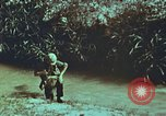 Image of survival techniques Philippines, 1968, second 21 stock footage video 65675072407