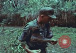 Image of survival techniques Philippines, 1968, second 25 stock footage video 65675072407