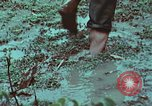 Image of survival techniques Philippines, 1968, second 33 stock footage video 65675072407