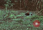 Image of survival techniques Philippines, 1968, second 39 stock footage video 65675072407