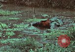 Image of survival techniques Philippines, 1968, second 42 stock footage video 65675072407