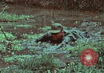 Image of survival techniques Philippines, 1968, second 45 stock footage video 65675072407