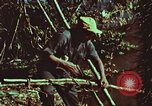 Image of survival techniques Philippines, 1968, second 47 stock footage video 65675072408