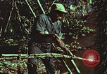 Image of survival techniques Philippines, 1968, second 49 stock footage video 65675072408