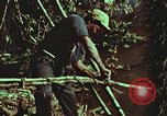 Image of survival techniques Philippines, 1968, second 54 stock footage video 65675072408