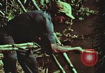 Image of survival techniques Philippines, 1968, second 56 stock footage video 65675072408