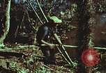 Image of survival techniques Philippines, 1968, second 62 stock footage video 65675072408