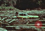 Image of survival techniques Philippines, 1968, second 58 stock footage video 65675072409