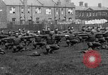Image of American airmen exercise and calisthenics World War I London England United Kingdom, 1917, second 10 stock footage video 65675072433