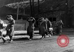 Image of 334th Infantry Regiment Germany, 1945, second 21 stock footage video 65675072466