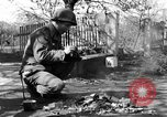 Image of 334th Infantry Regiment Germany, 1945, second 55 stock footage video 65675072466