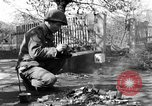 Image of 334th Infantry Regiment Germany, 1945, second 56 stock footage video 65675072466