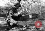 Image of 334th Infantry Regiment Germany, 1945, second 58 stock footage video 65675072466
