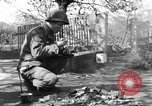 Image of 334th Infantry Regiment Germany, 1945, second 61 stock footage video 65675072466
