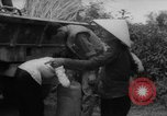 Image of refugees evacuated Vietnam, 1967, second 14 stock footage video 65675072479