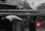 Image of refugees evacuated Vietnam, 1967, second 17 stock footage video 65675072479