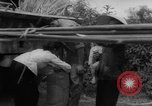 Image of refugees evacuated Vietnam, 1967, second 18 stock footage video 65675072479
