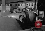 Image of B-29 Superfortress Kansas United States USA, 1946, second 46 stock footage video 65675072622