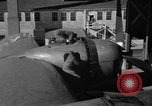 Image of B-29 Superfortress Kansas United States USA, 1946, second 48 stock footage video 65675072622