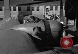 Image of B-29 Superfortress Kansas United States USA, 1946, second 49 stock footage video 65675072622