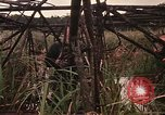 Image of recovery of LB-7 aircraft Bluefields Nicaragua, 1969, second 38 stock footage video 65675072638