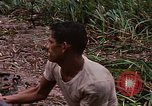 Image of recovery of LB-7 aircraft Bluefields Nicaragua, 1969, second 43 stock footage video 65675072640