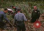 Image of recovery of LB-7 aircraft debris Bluefields Nicaragua, 1969, second 14 stock footage video 65675072642